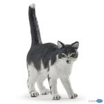 54041 - Black and white cat