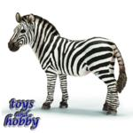 14392 - Zebra female