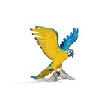 14690 - Blue and Yellow Macaw
