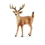 14709 - White-tailed buck