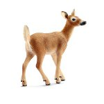 14710 - White-tailed doe