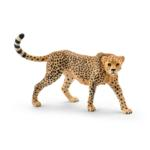 14746 - Cheetah female