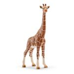 14750 - Giraffe female