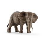 14761 - African elephant female